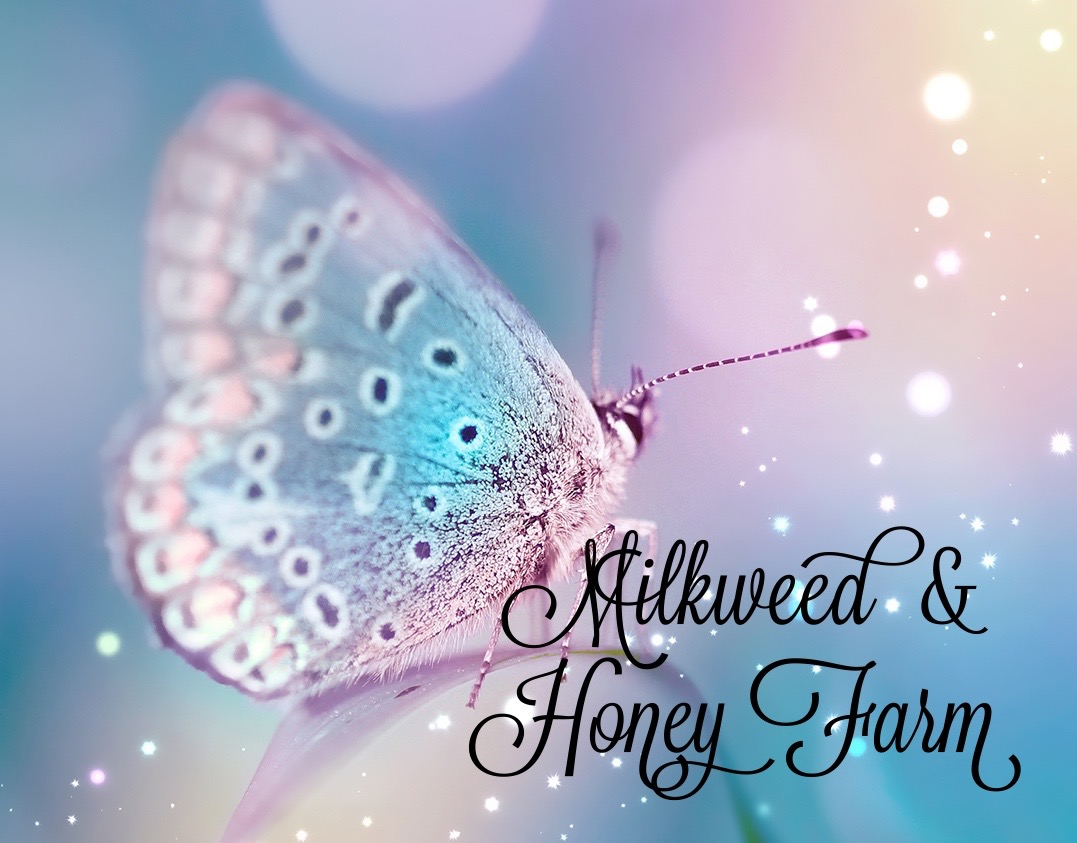 Milkweed and Honey Butterfly Farm