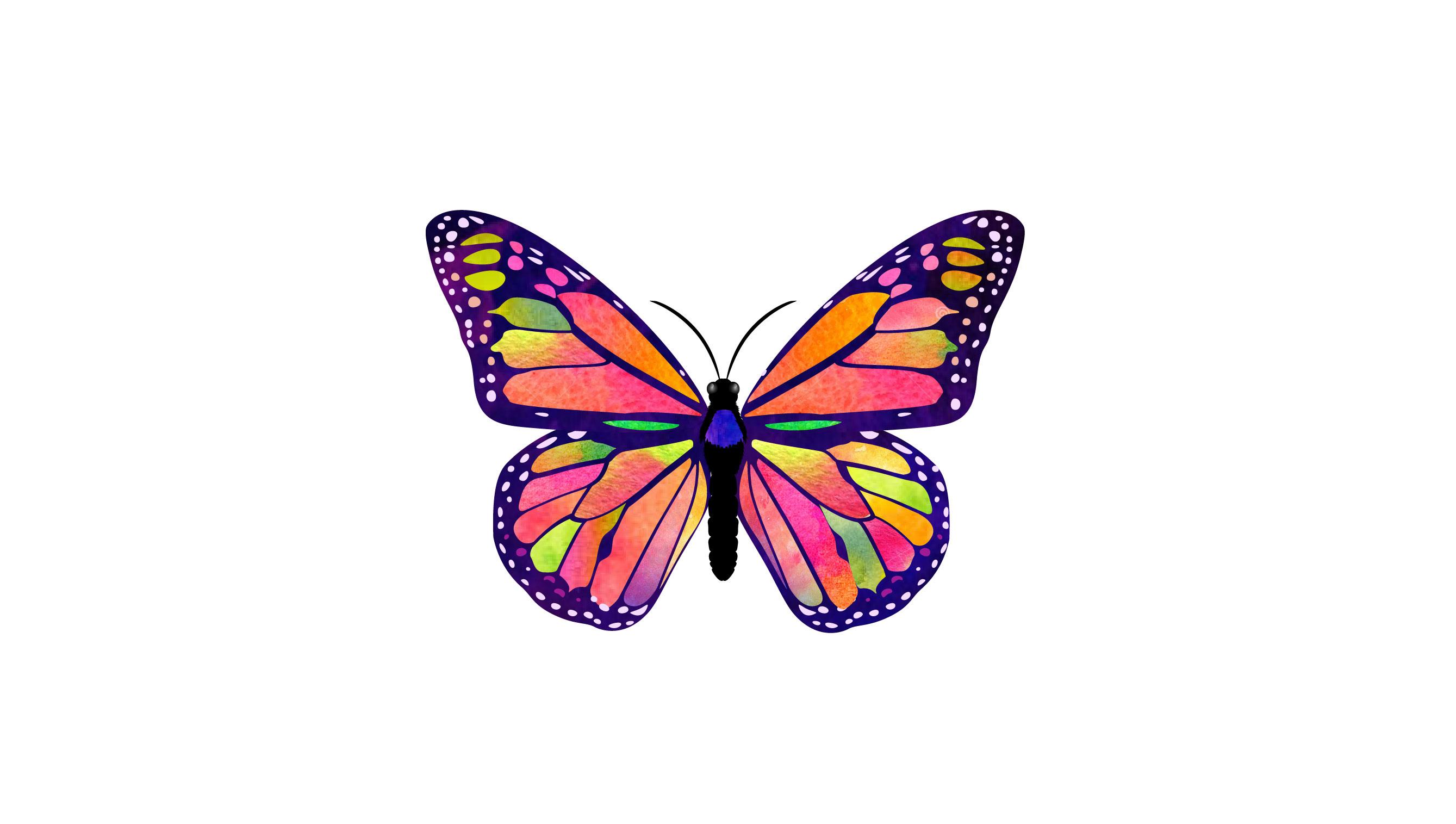 Zuzu Farm Butterflies
