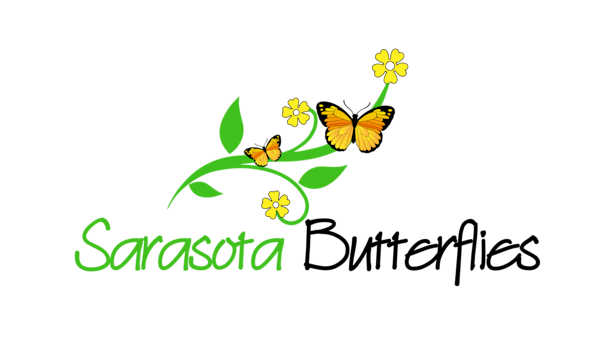 Sarasota Butterflies