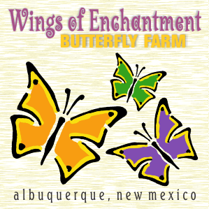 Wings of Enchantment Butterfly Farm