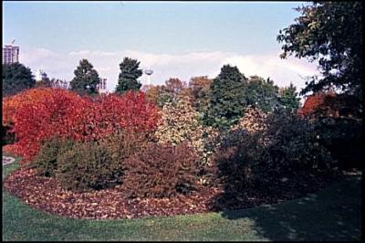 Image1a8