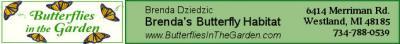 sponsor ButterfliesInTheGarden