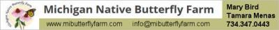 sponsor MichiganButterfly light-olive