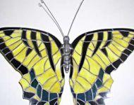 auction ma swallowtail2